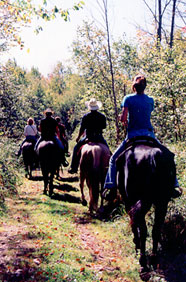 Horse riding trails at Palmquist Farm